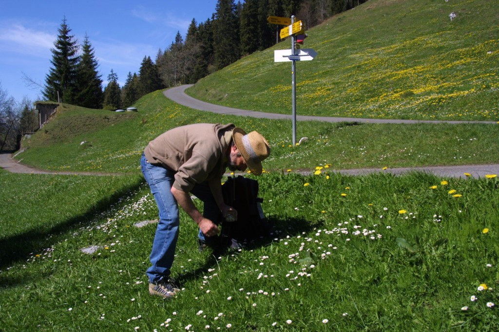 Metzger picking daisies_8013