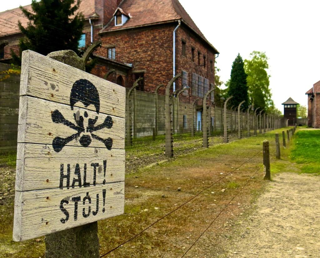 Auschwitz skull sign_3557