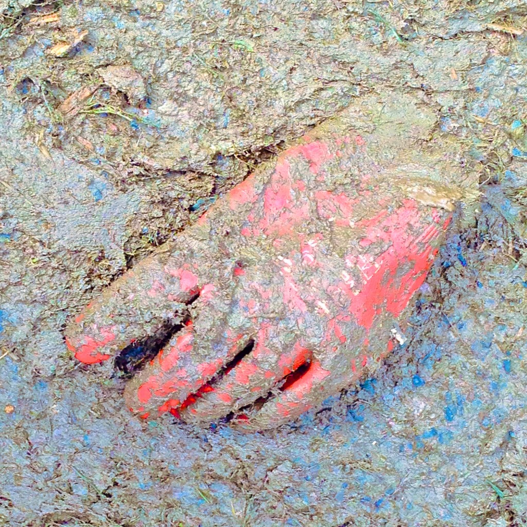 Abandoned rubber glove in mud at Glastonbury.