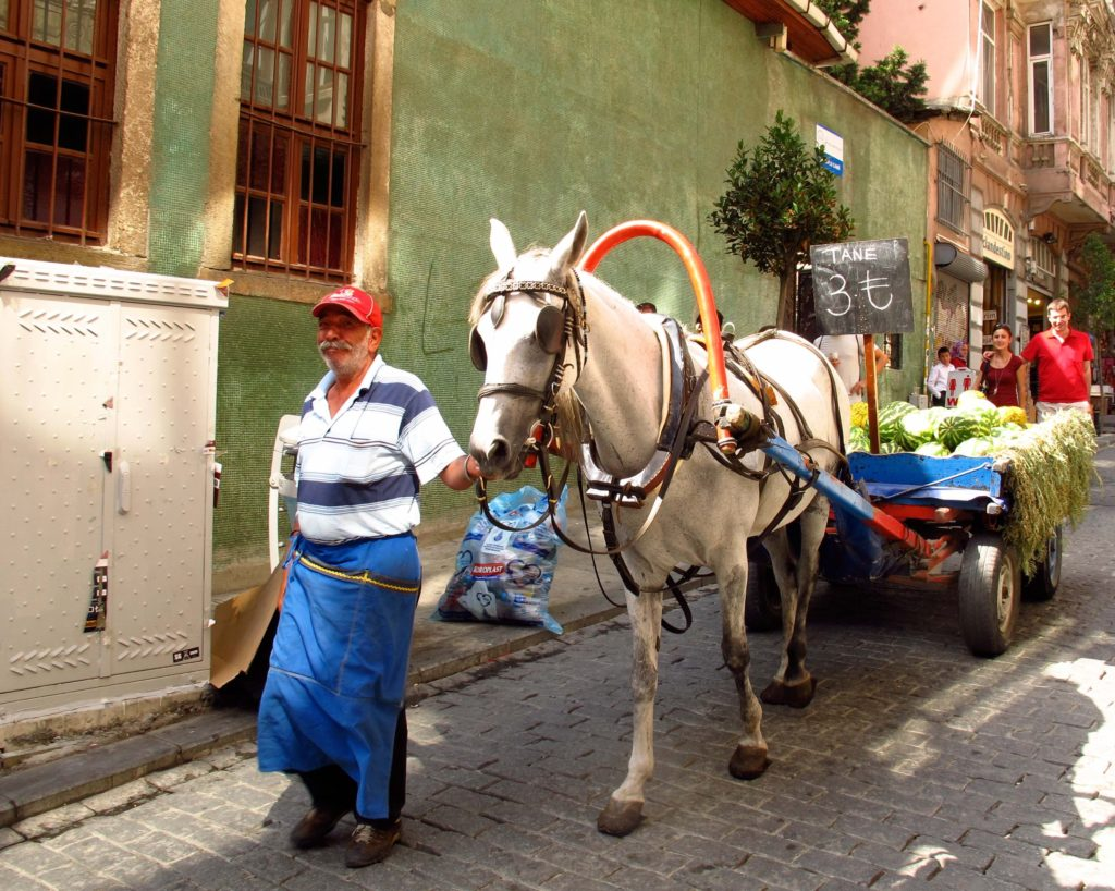 man selling watermelon from a horse-drawn cart in Istanbul