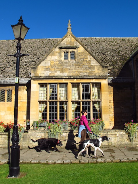 A woman walks her dog along Broadway's main street in the English Cotswolds.