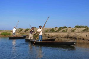 Joseph Culvr (far right) demonstrates the proper way to navigate a traditional flat-bottomed Catalan boat at MonNatura Delta de l'Ebre in Amposta, Catalunya, Spain. Copyright Amy Laughinghouse