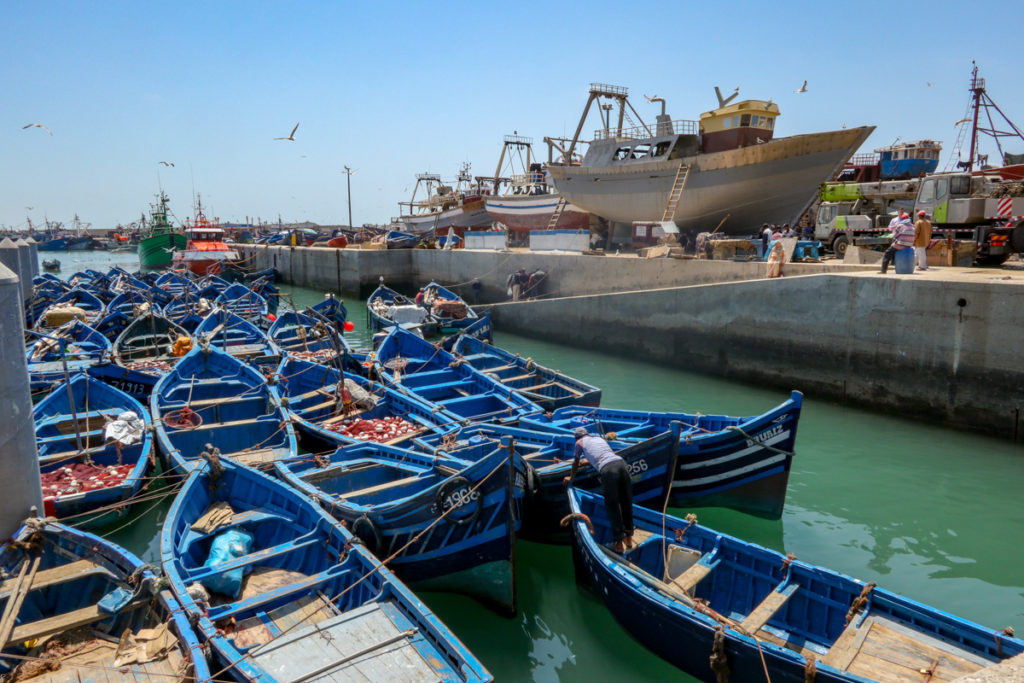 Fishing boats of all sizes and descriptions fill Essaouira's port. Copyright Amy Laughinghouse.